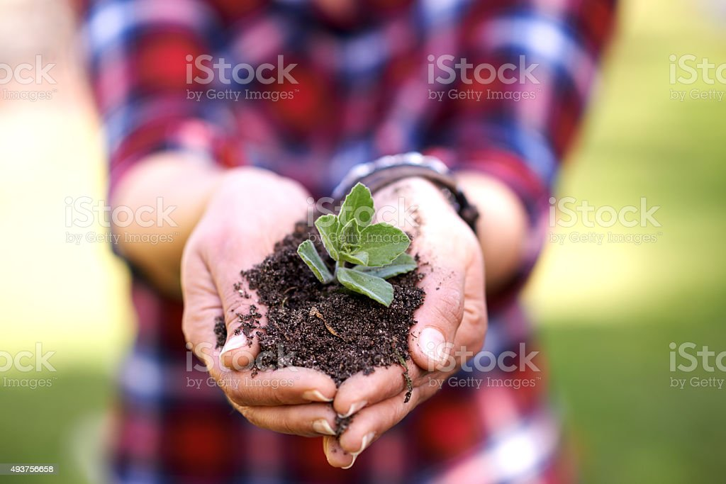 Keep calm and plant something stock photo