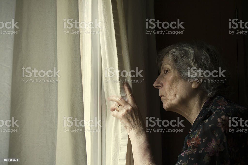 Keeping an Eye on the Neighbours. royalty-free stock photo