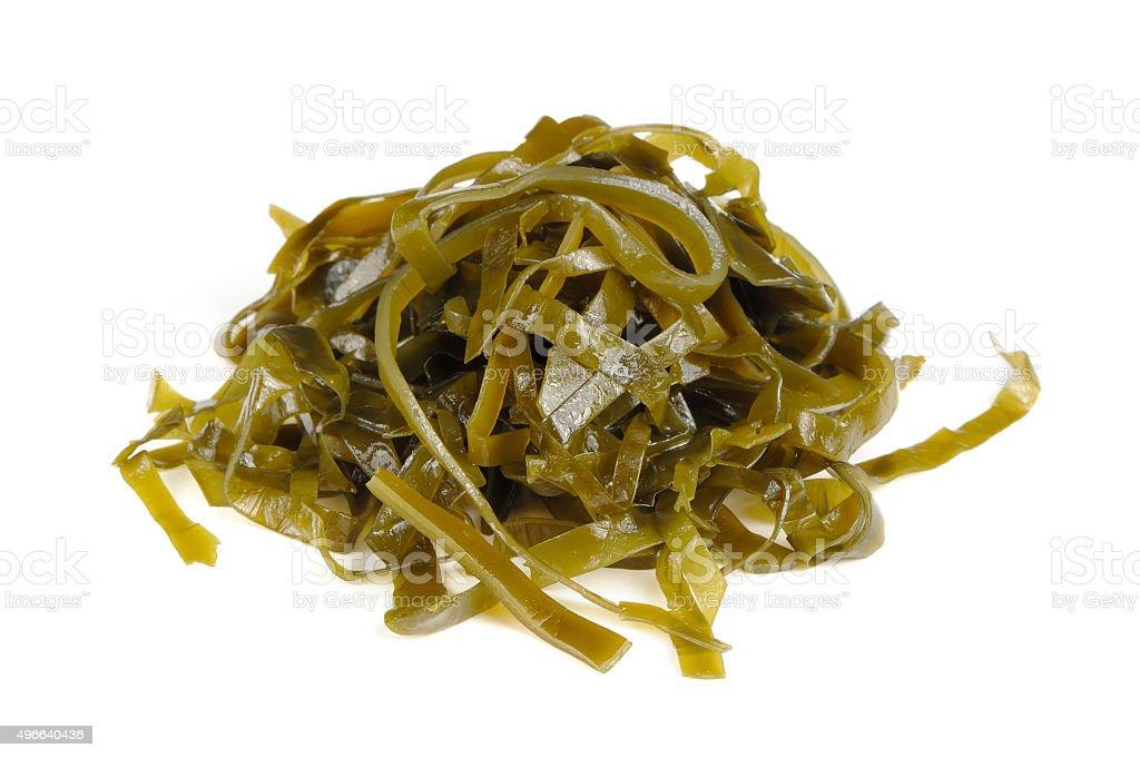 Kelp (Laminaria) Seaweed Isolated on White Background stock photo