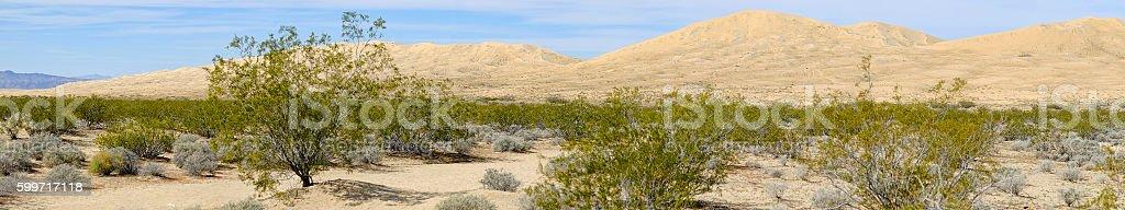 Kelso Dunes in Mojave National Preserve California stock photo