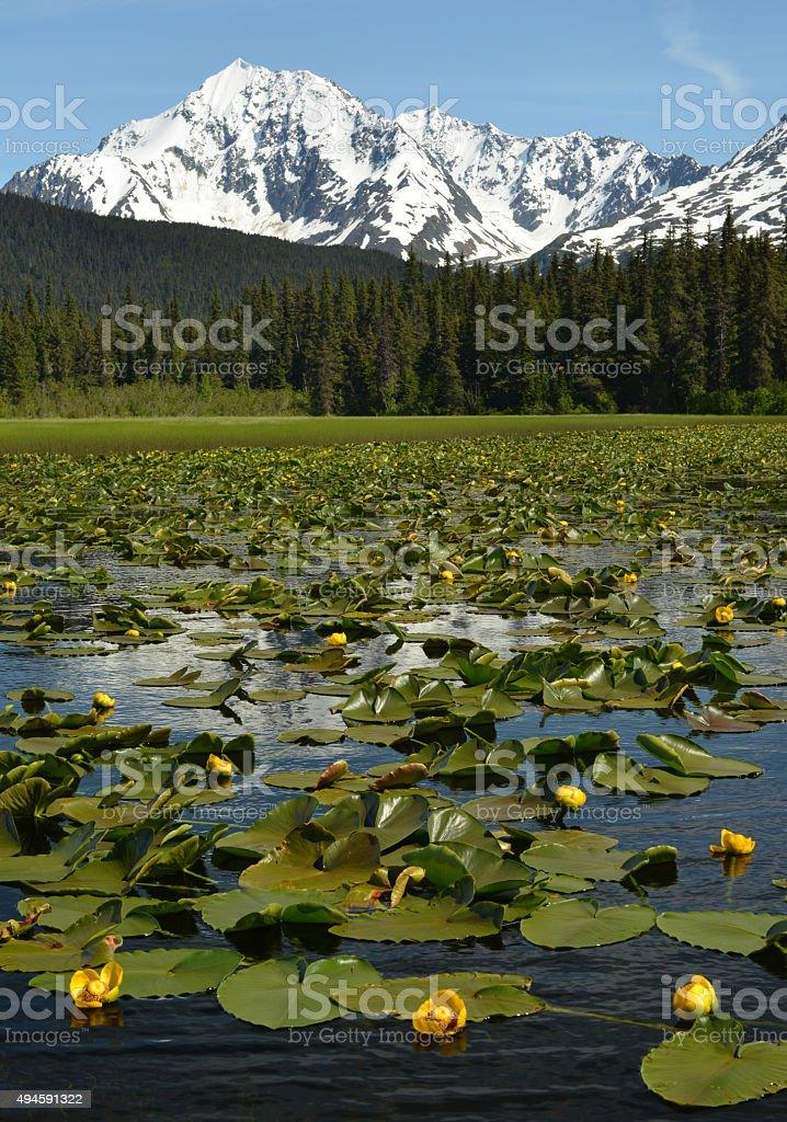 Kenai Mountains lake, Alaska stock photo