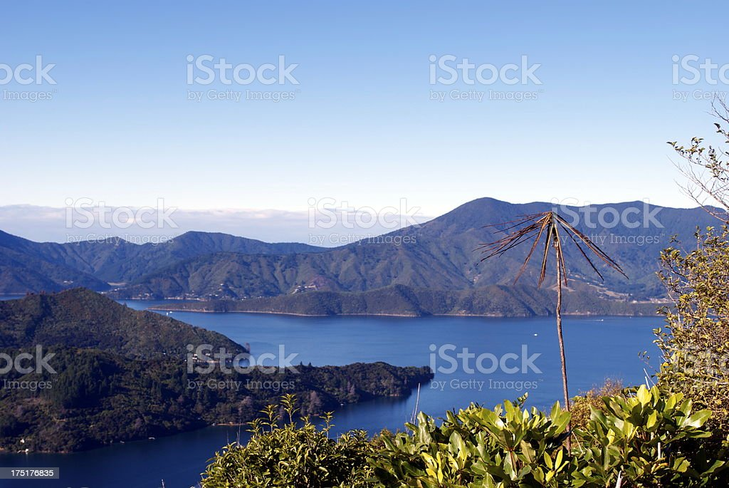 Kenepuru Sound, Marlborough Sounds, New Zealand royalty-free stock photo