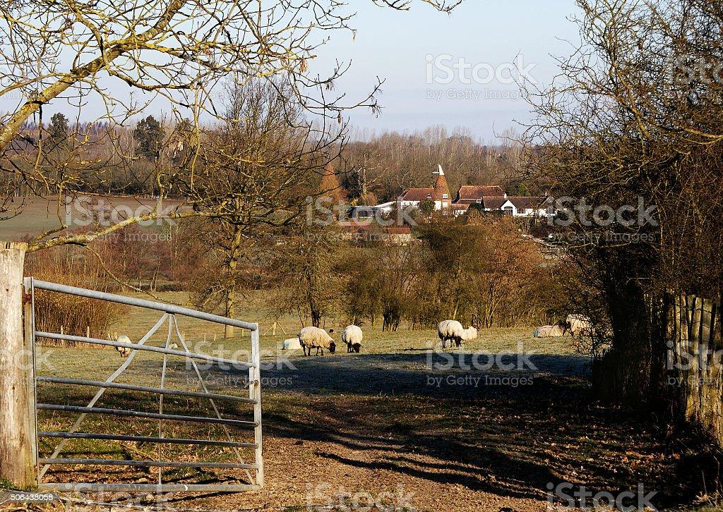 Kent Countryside stock photo