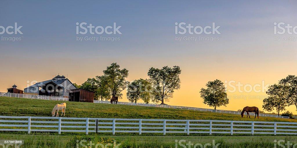 Kentucky farm at sunrise stock photo