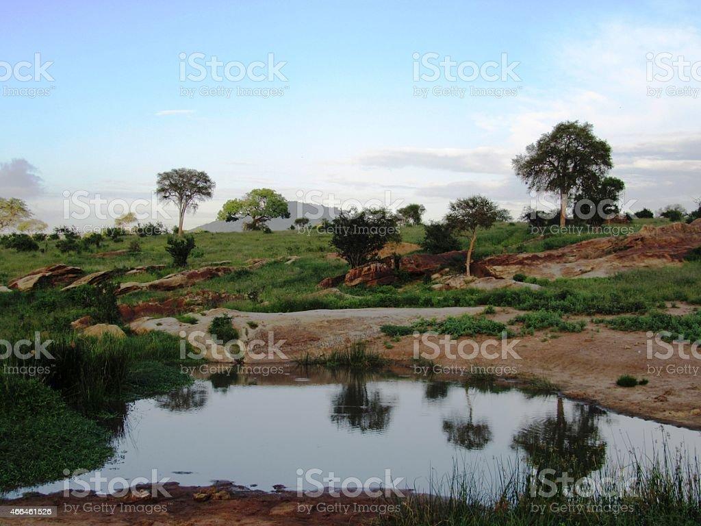 Kenya, Waterhole in Tsavo East Africa stock photo