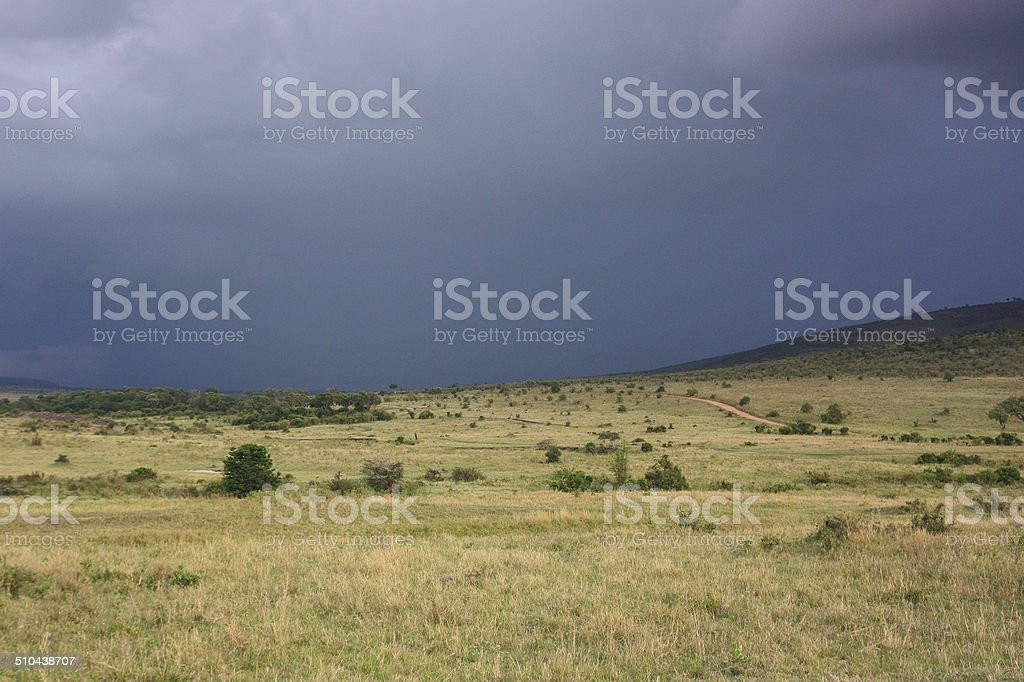 Kenyan savannah royalty-free stock photo