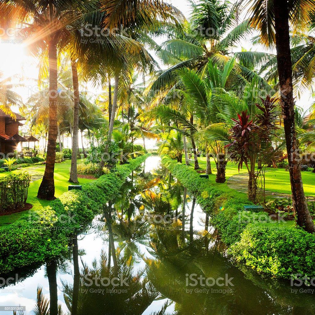 Kerala Backwaters in India stock photo