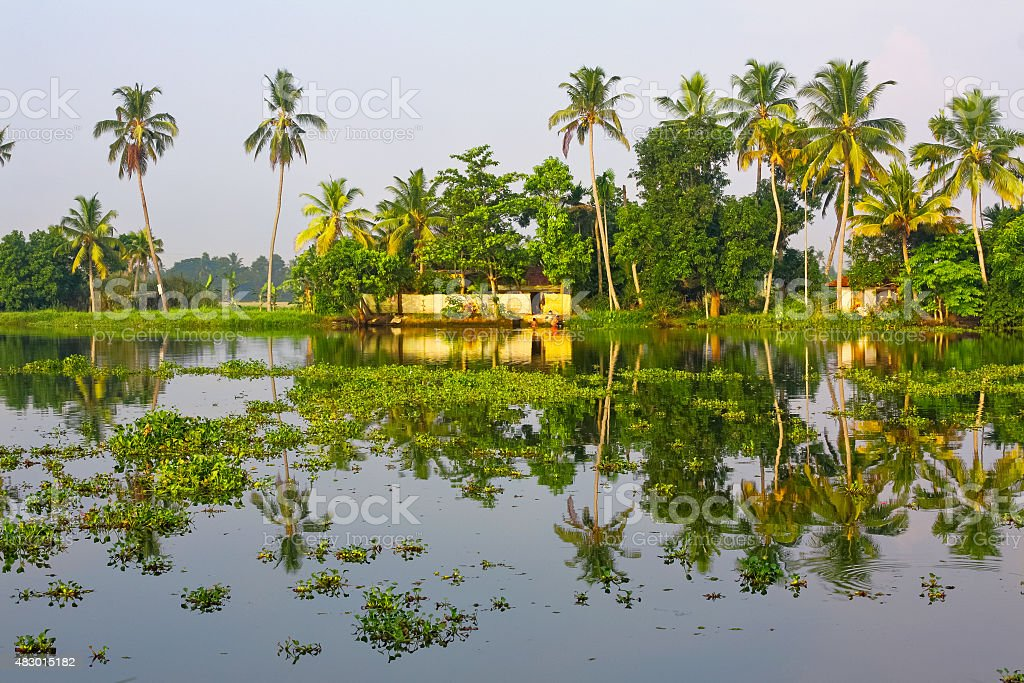 Kerala Backwaters Lagoon Landscape with Palm Trees India stock photo