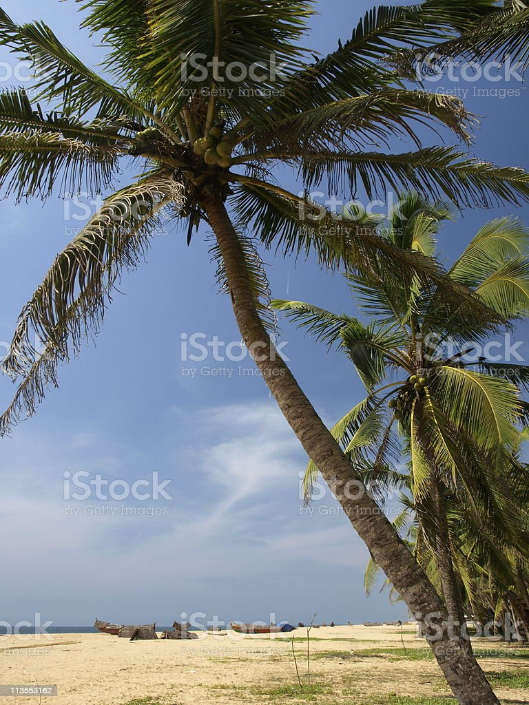 Kerala beach,India. stock photo
