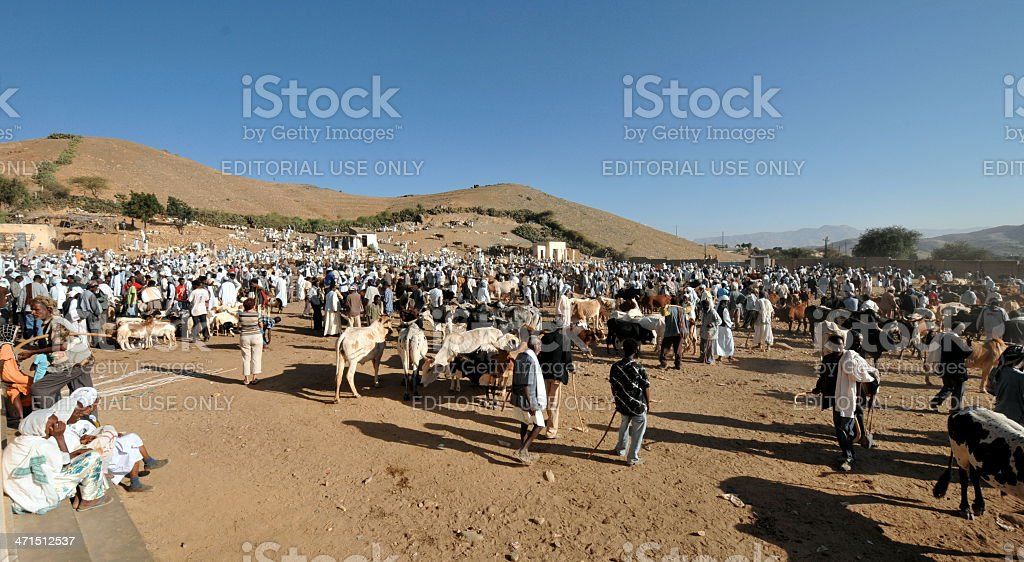 Keren camel market stock photo