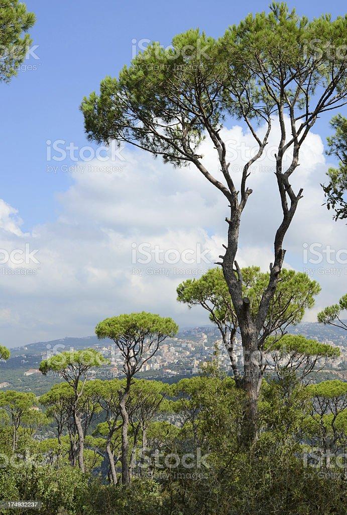 Kesrouan Lebanon royalty-free stock photo