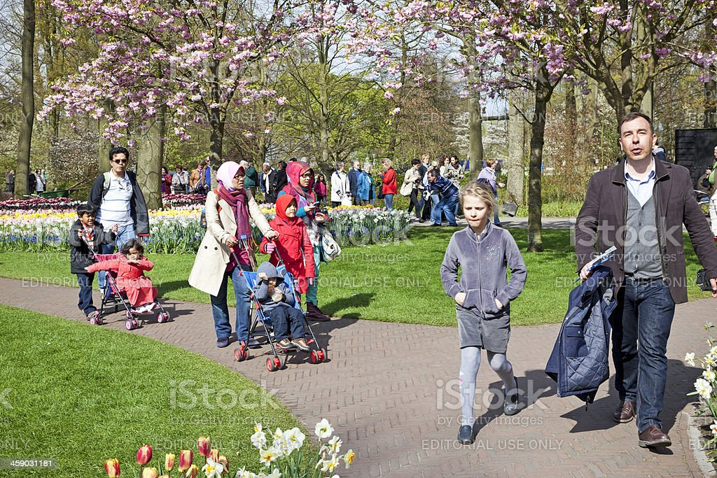 Keukenhof Gardens # 9 XXXL royalty-free stock photo