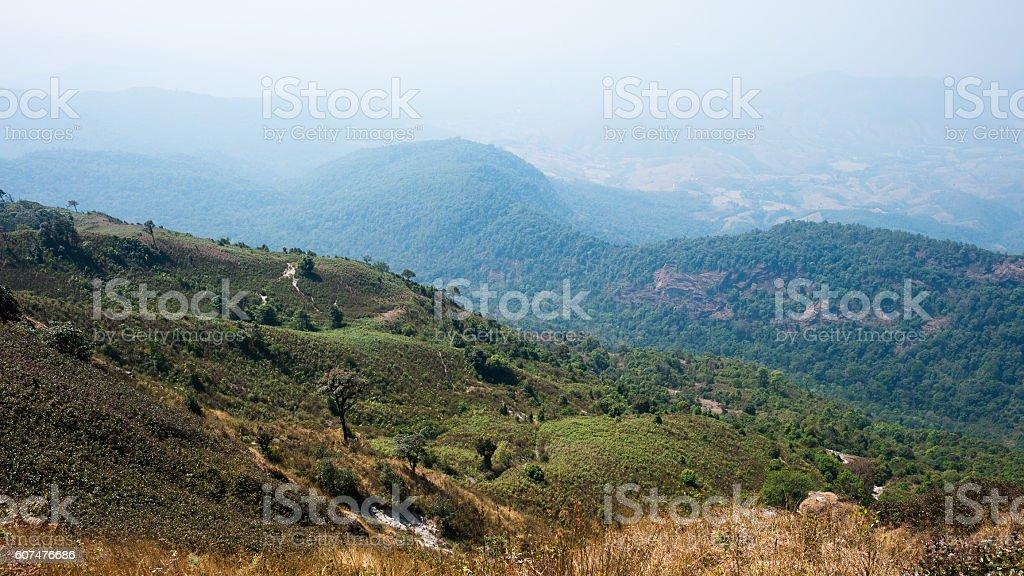 Kew Mae Pan Nature trail,Doi Inthanon,Chaingmai, Thailand stock photo