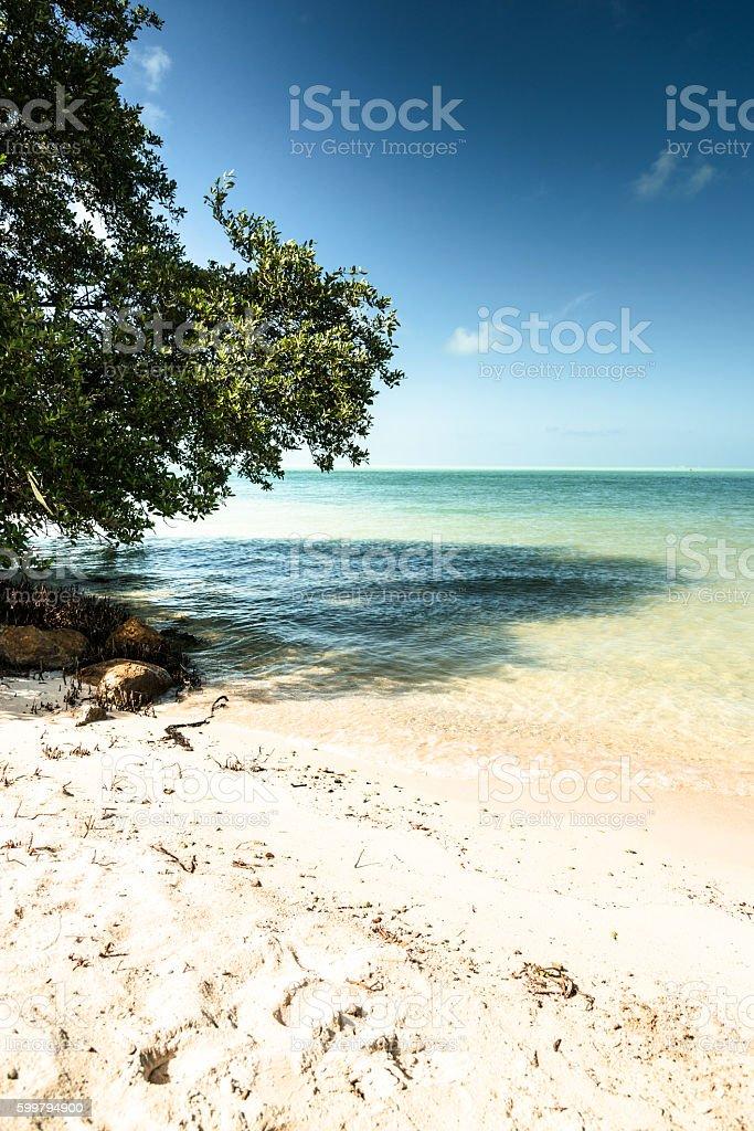 key largo beach stock photo
