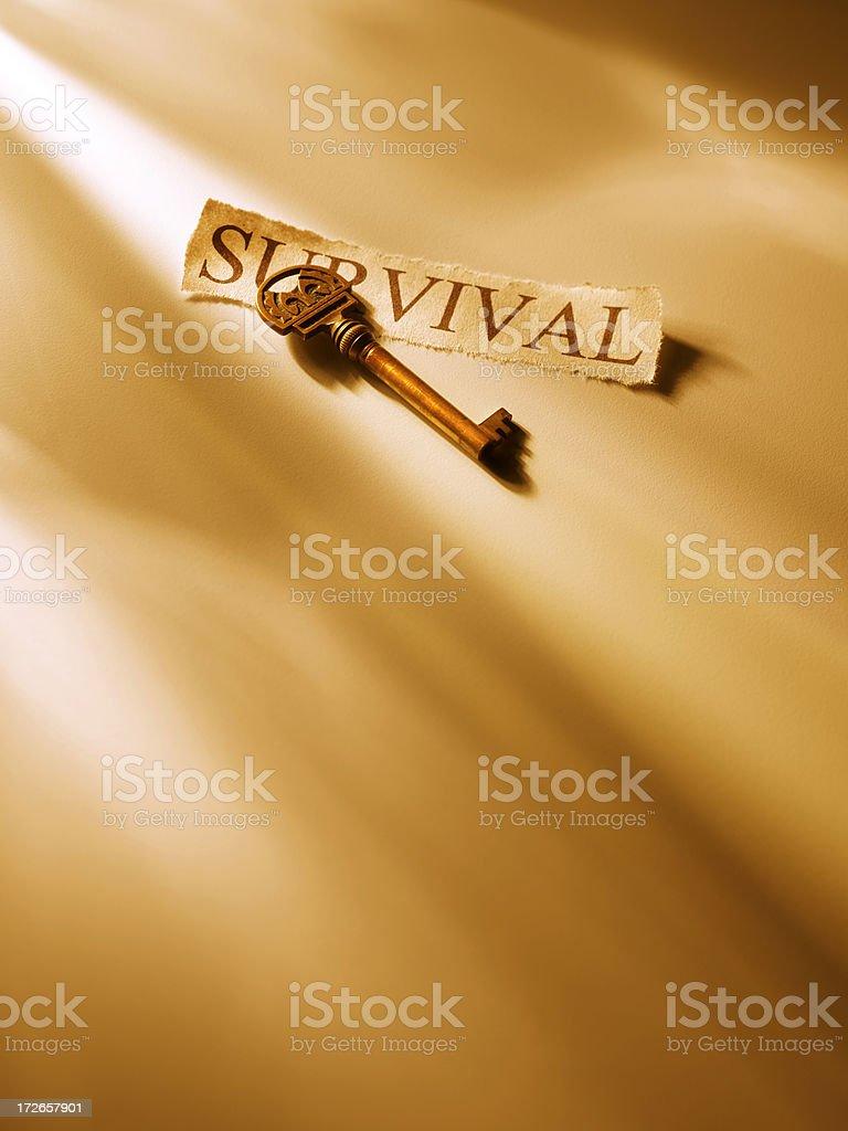 Key to Survival 3 stock photo