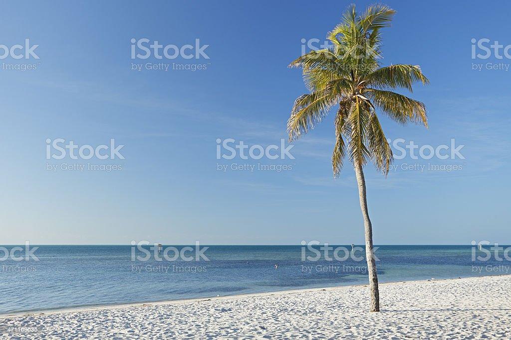 Key West Landscape royalty-free stock photo