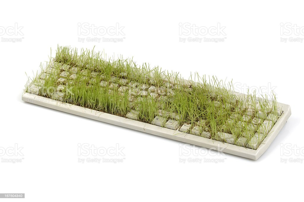 Keyboard With Grass (side view) stock photo