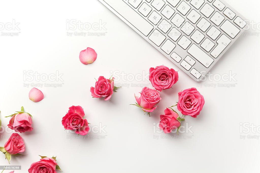 Keyboard with pink roses on white background. Flat lay. Top stock photo