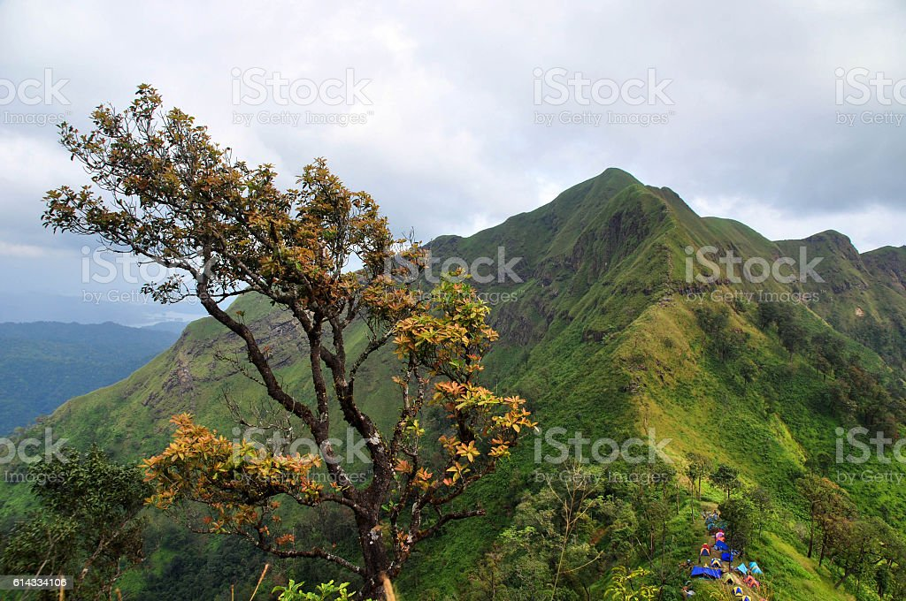 khao chang peuk,thailand stock photo