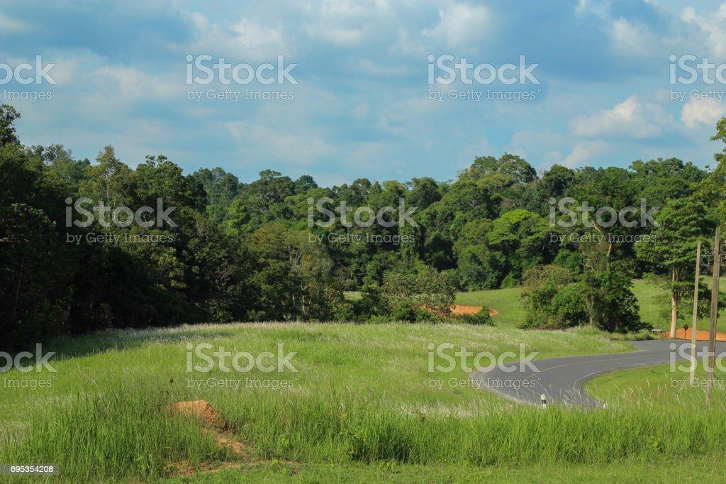 Khao Yai National Park,tropical seasonal forest World Heritage Sites stock photo