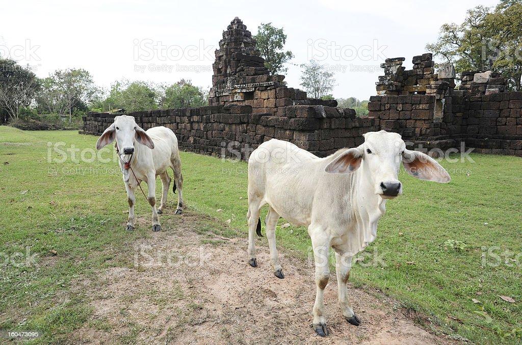 Khmer temple of Reusi Kuti royalty-free stock photo