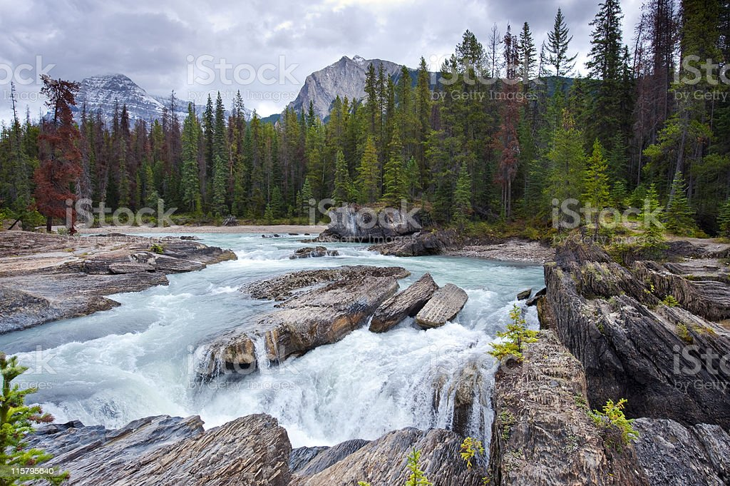 Kicking Horse River royalty-free stock photo