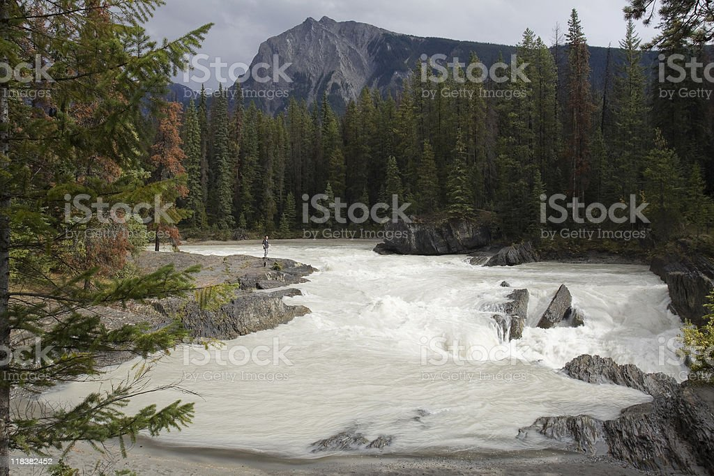 Kicking Horse River stock photo