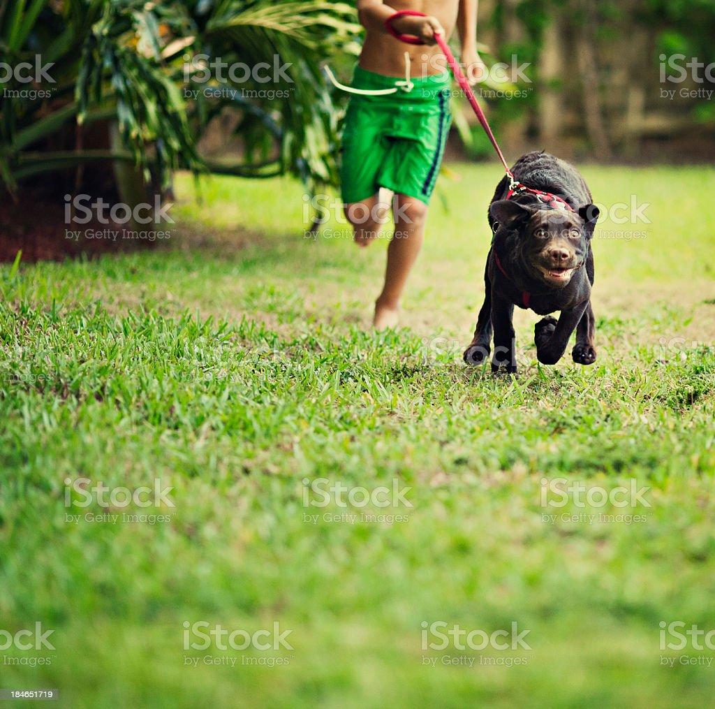 kid and his dog running stock photo
