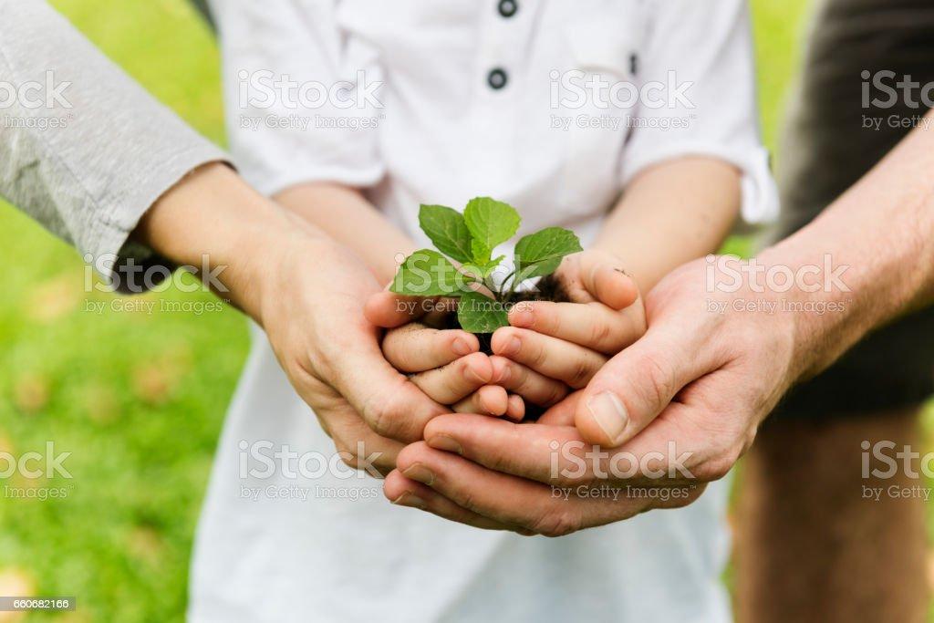 Kid Gardening Greenery Growing Leisure stock photo