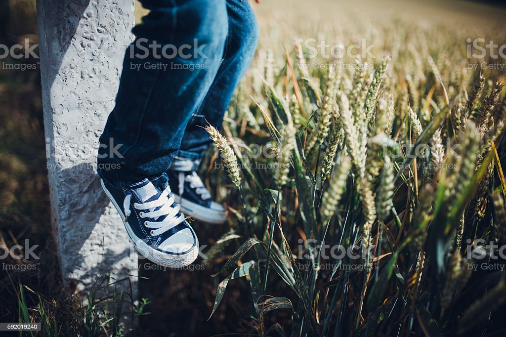 Kid in the field stock photo