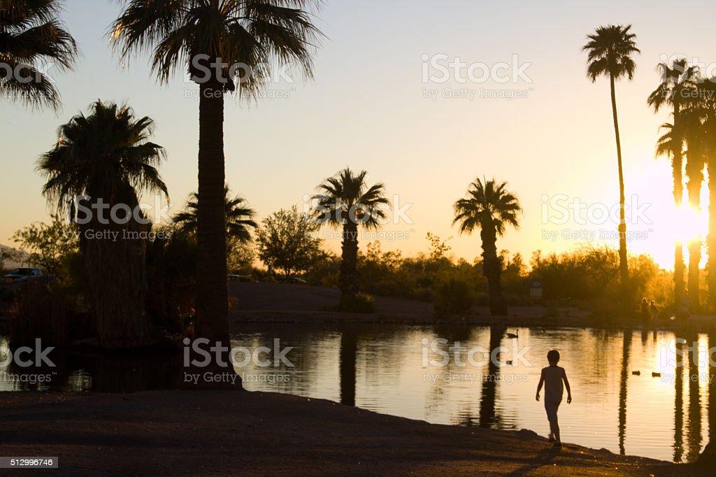 kid walking along pond at sunset stock photo