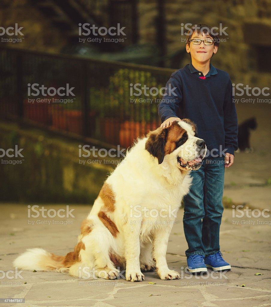 kid with st. bernard dog royalty-free stock photo