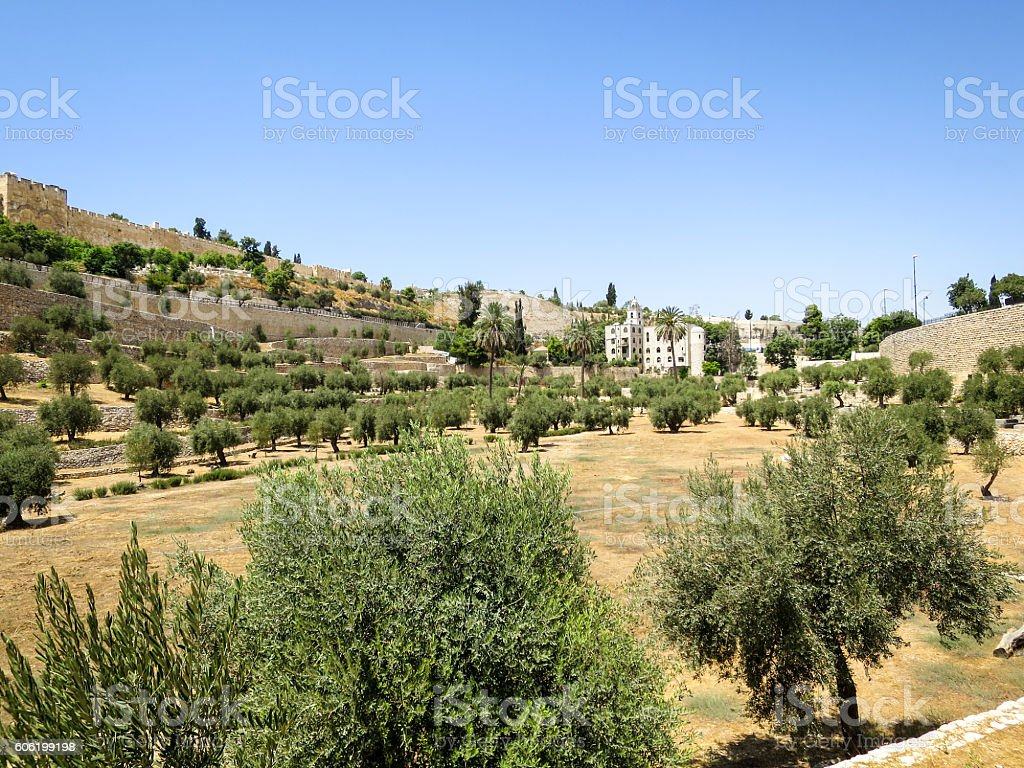 Kidron Valley stock photo