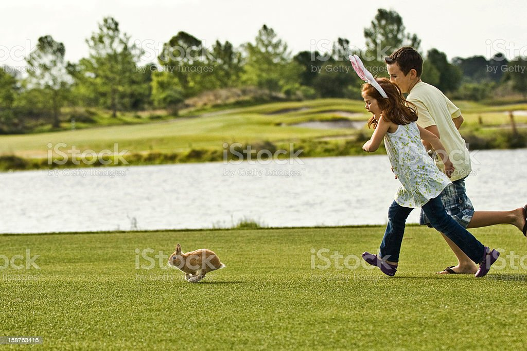 Kids Chasing Rabbit on Golf Course royalty-free stock photo