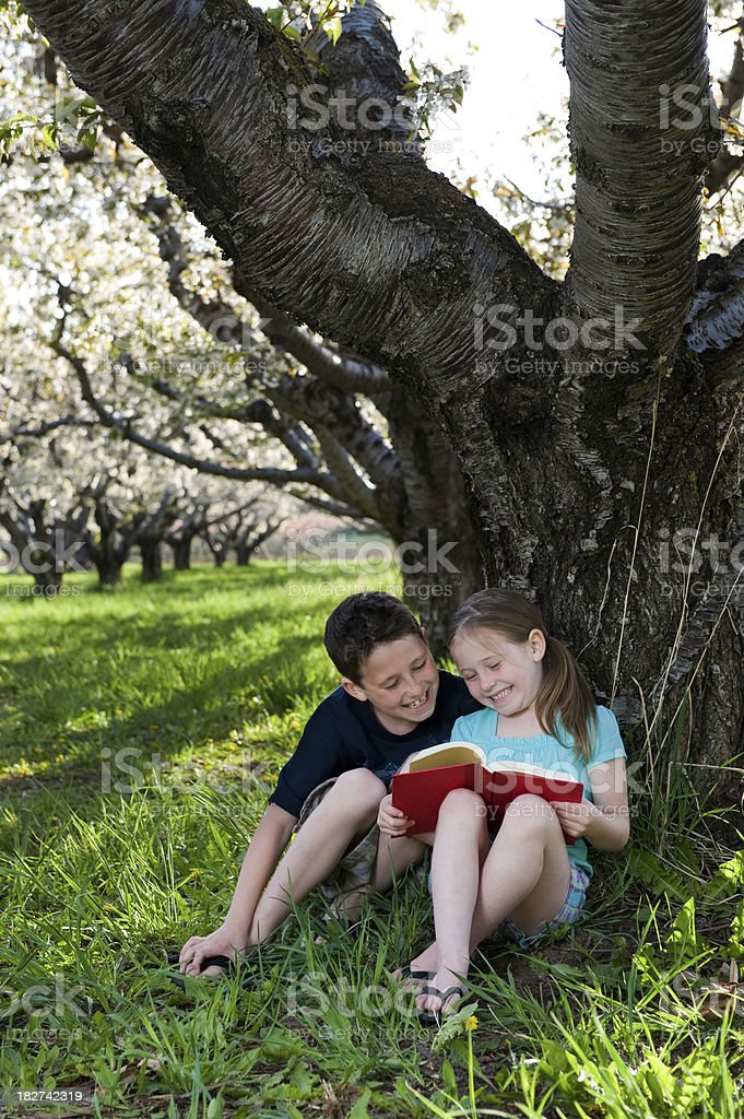 Kids - Children reading under a tree royalty-free stock photo