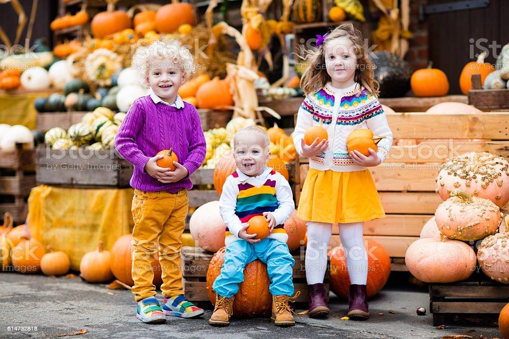 Kids having fun at pumpkin patch at  harvest festival celebration stock photo