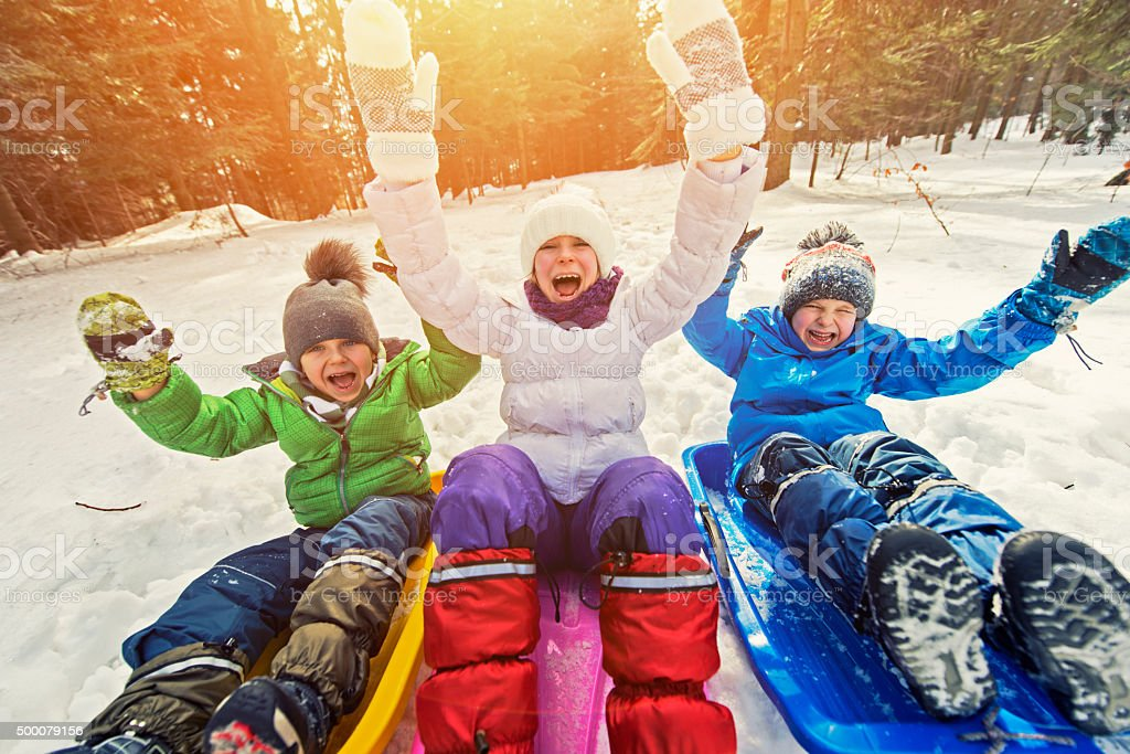 Kids having fun pulled on sleds in winter forest. stock photo