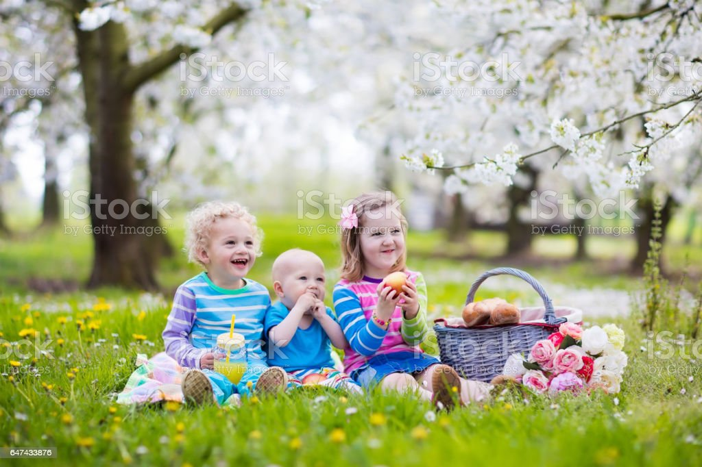 Kids having picnic in blooming garden stock photo