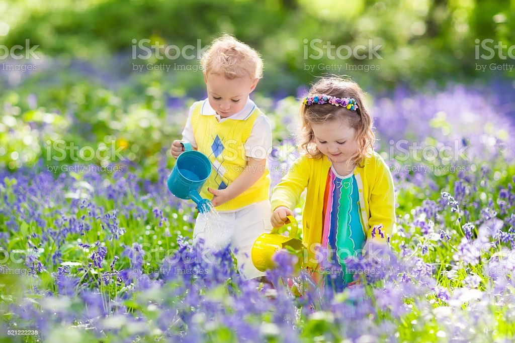 Kids in a garden with bluebell flowers stock photo
