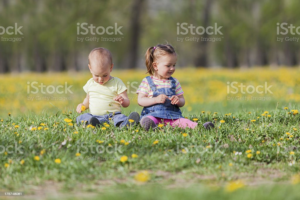 Kids in the spring field royalty-free stock photo