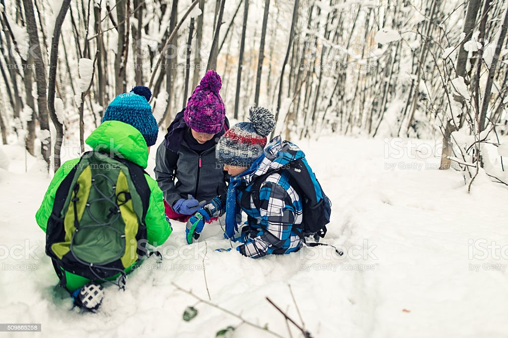 Kids observing animal tracks in winter forest stock photo