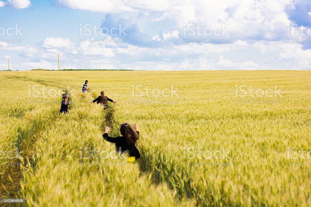 kids on field running stock photo