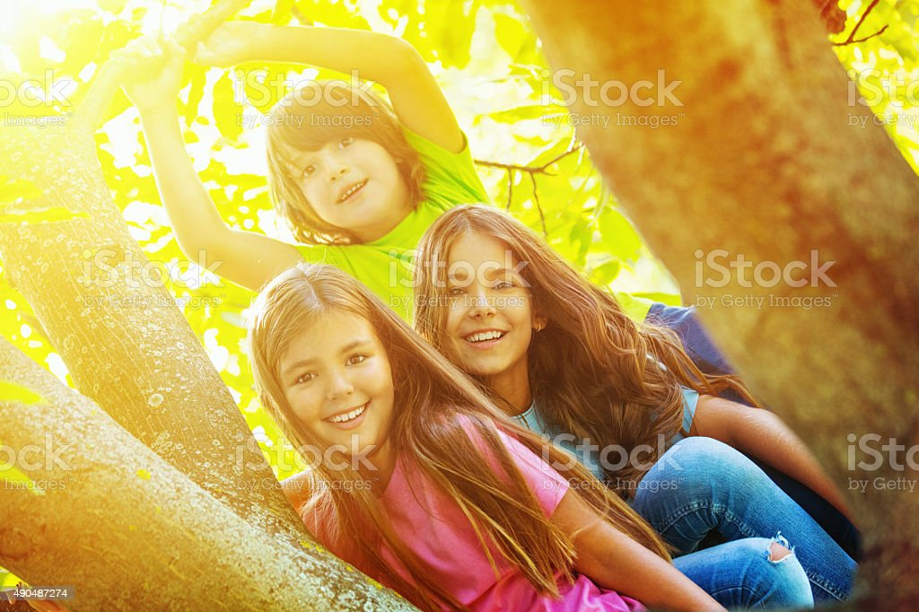 Kids playing in a tree. stock photo