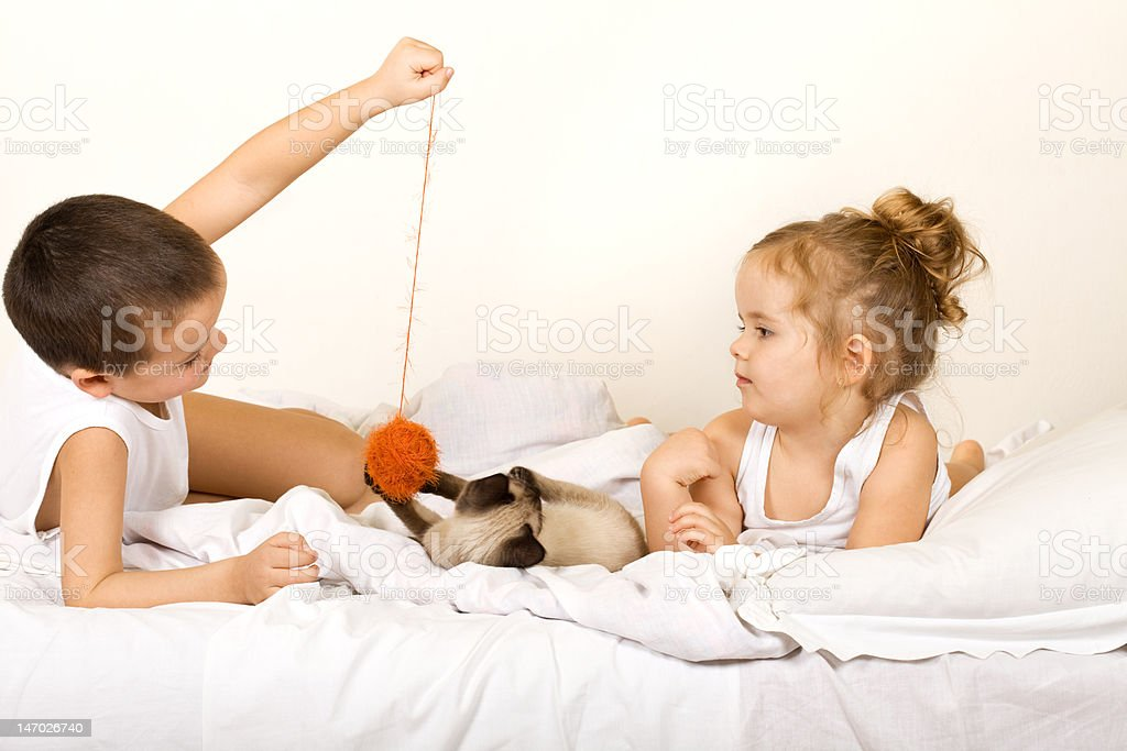 Kids playing with their cat royalty-free stock photo