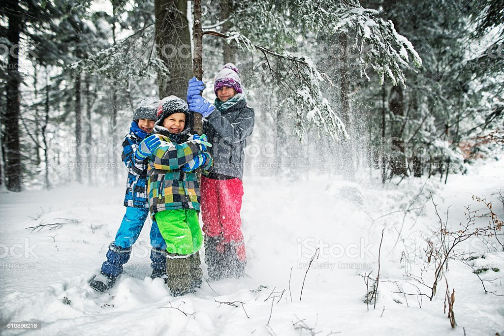 Kids shaking snow off trees in winter forest. stock photo