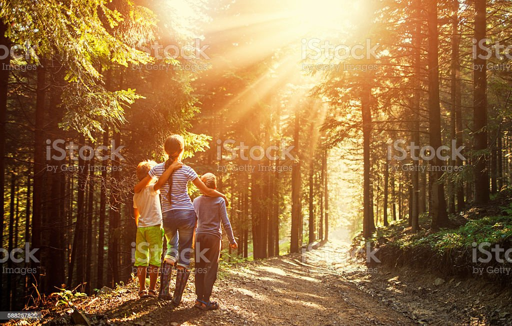 Kids watching beautiful sun beams in forest stock photo