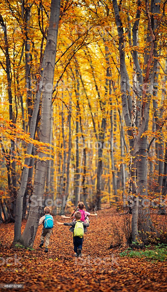 Kids with backpacks running in autumn forest stock photo