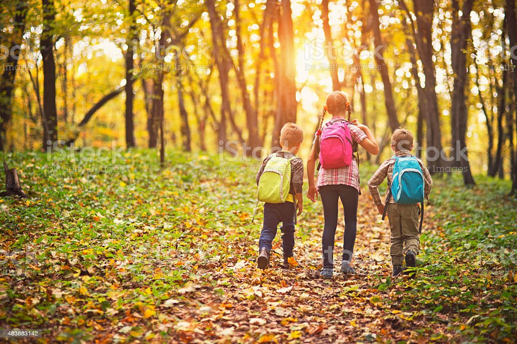 Kids with backpacks walking in autumn forest stock photo