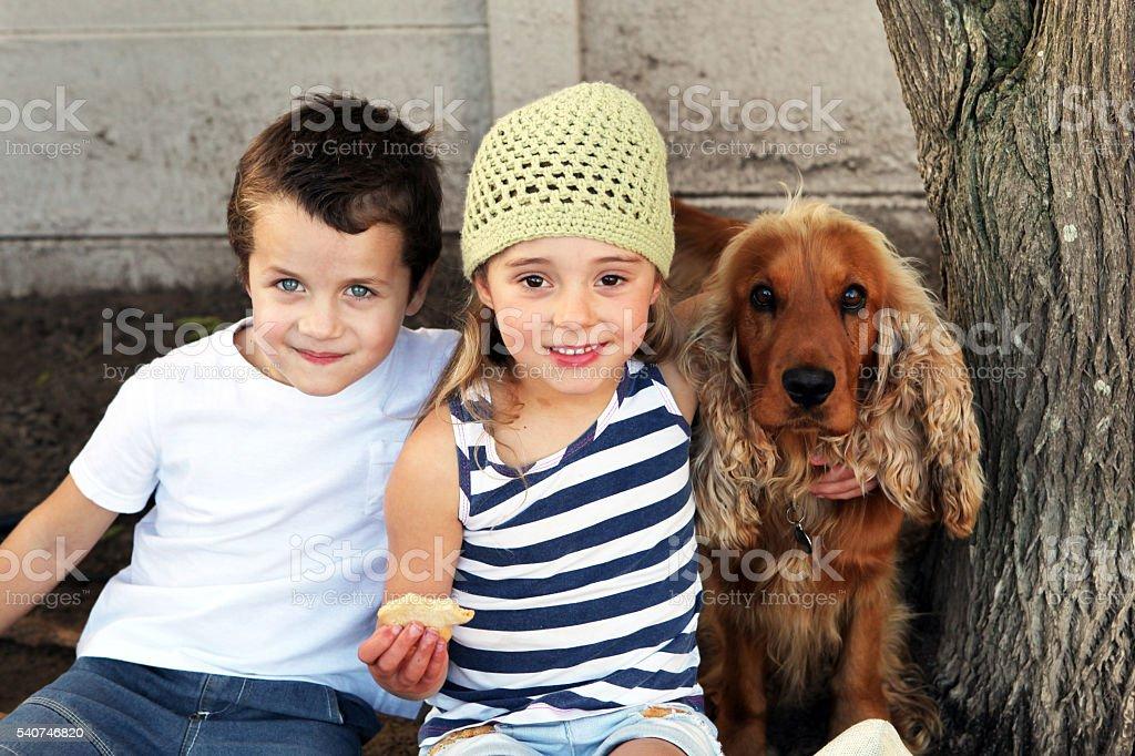 Kids with dog stock photo