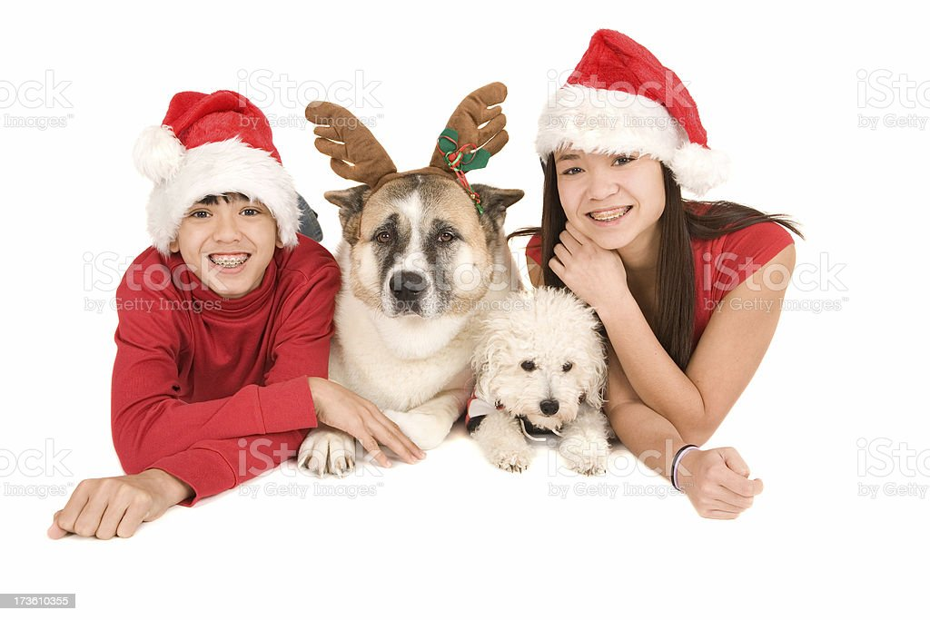 Kids with Dogs royalty-free stock photo